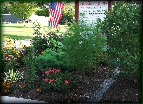Petersen Landscaping and Design - Hardscaping Services in Keene NH